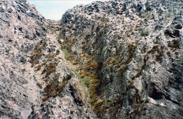 Redonda: the top half of the path to the crest 1984